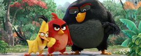 Angry Birds : la suite est déjà en préparation
