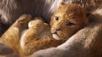 Le Roi Lion à 21h sur Canal+ : 5 bonnes raisons de (re)découvrir le Disney de 2019