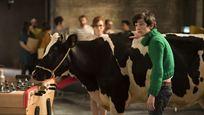 Gaston Lagaffe sur TF1 : connaissez-vous l'autre adaptation cinéma de la célèbre BD ?