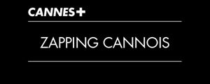 Cannes 2012 : le zapping best-of [CANAL +]