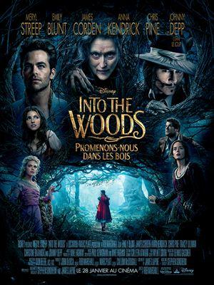 Into the Woods, Promenons-nous dans les bois