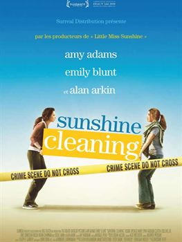 Sunshine Cleaning