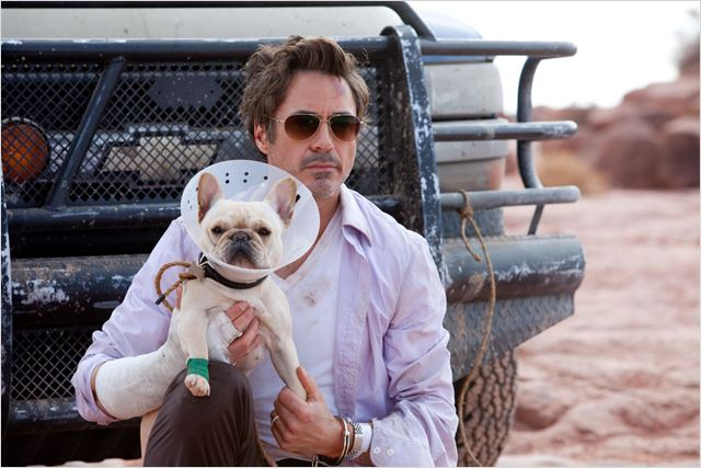 Date limite : Photo Robert Downey Jr., Todd Phillips