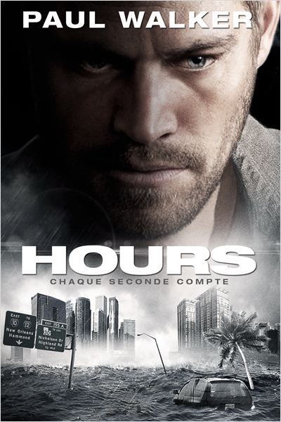 Hours [BRRiP] [MULTI]