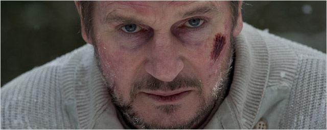 Le Territoire des Loups sur C8 : 5 choses à savoir sur le film avec Liam Neeson !