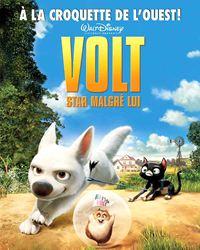 Affiche du film Volt, star malgré lui