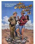 Affiche du film Tu fais pas le poids shérif !