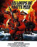 Affiche du film Les Loups de haute mer