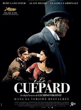 Le Guépard streaming