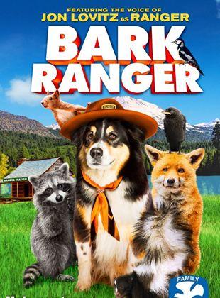 Ranger, un chien en or