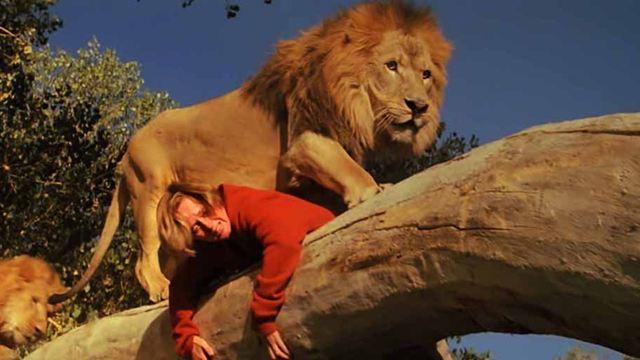 Ressortie Blu-ray DVD de Roar : le tournage le plus dangereux de l'histoire du cinéma
