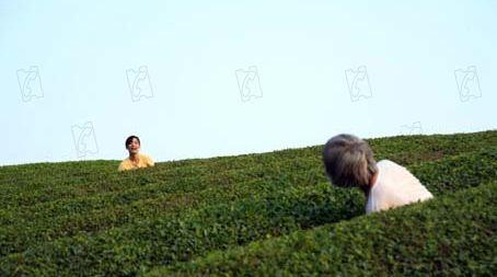 Photo du film La Forêt de Mogari