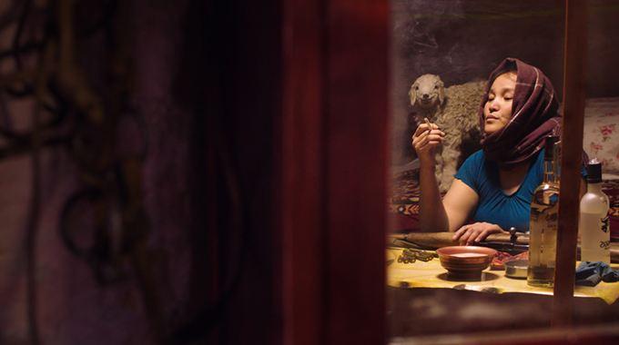 Photo du film La Femme des steppes, le flic et l'oeuf