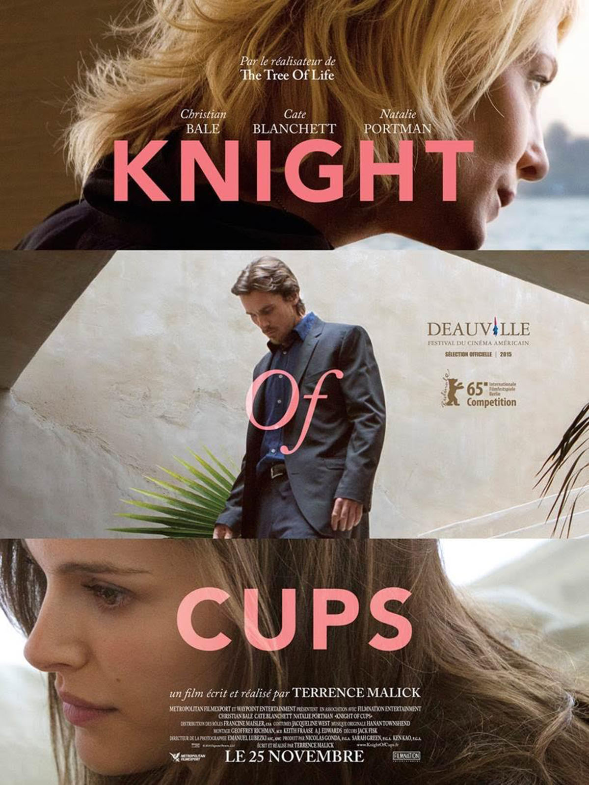 Knight of Cups ddl