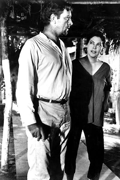 La Nuit de l'iguane : Photo Ava Gardner, John Huston, Richard Burton