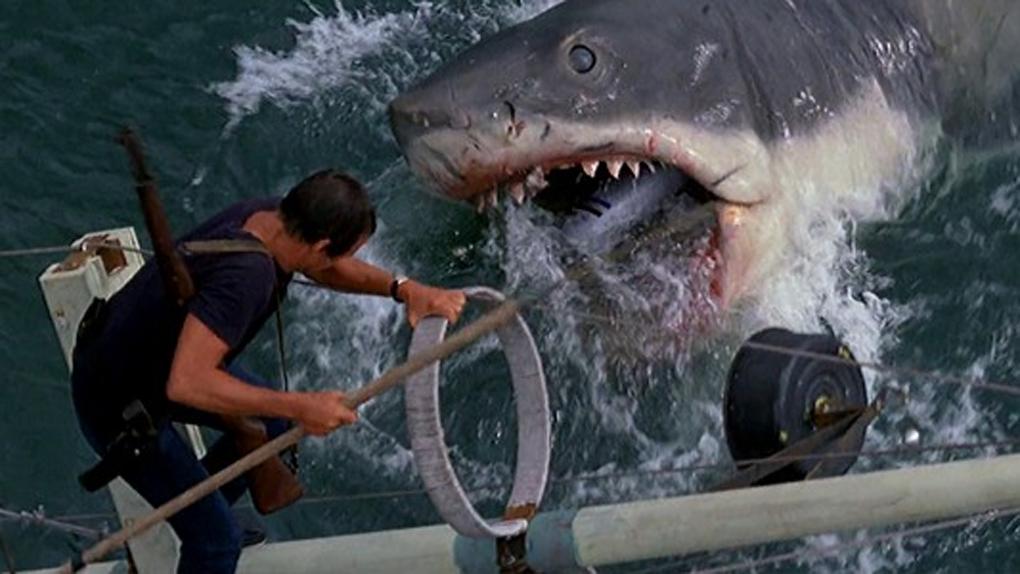 Squalophobie et ablutophobie - Les Dents de la mer