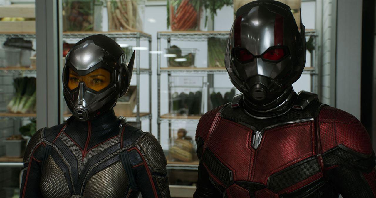 Ant-Man et la Guêpe: Evangeline Lilly, Paul Rudd
